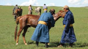 The people of Mongolia